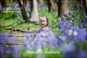 Bluebell portrait photographs Essex